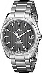 Omega Men's 231.10.39.21.06.001 Seamaster Grey Dial Watch